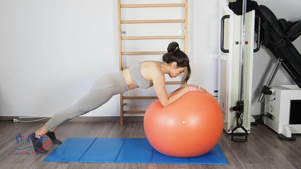 Plank su fitball